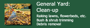 Tiplok General Yard Clean Up Services Middleton, WI